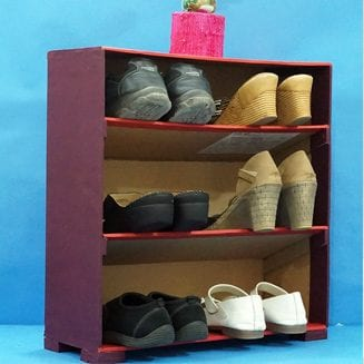 Best Out of Waste Shoe Organizer